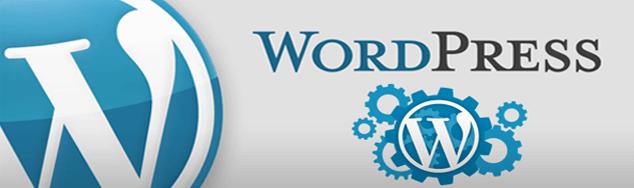 پشتیبانی سایت وردپرس | پشتیبانی حرفه ای وردپرس