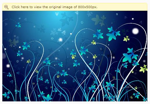 پلاگین ریسایز کردن تصاویر در ویبولتین