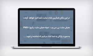 p30web-site-info-pms-1