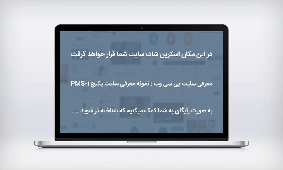 نمونه معرفی سایت پکیج PMS-1