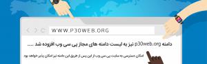 p30web-net